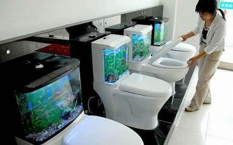 fish-tank_uwxpn_69